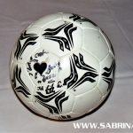 Tagesaufgabe: Torwandschießen gegen Fußball-Legende Toni Polster. Hier der original Ball, handsigniert von allen Torwandschützen.