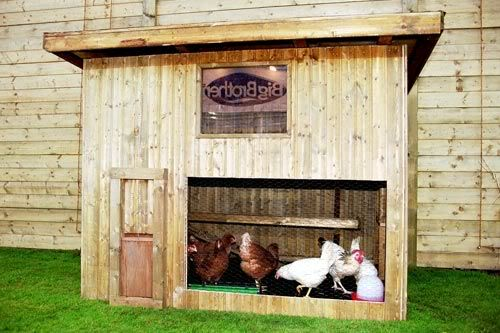 Der Hühnerstall auf dem Freigelände von Big Brother 2000. Foto: Endemol